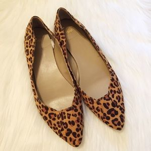 Gap | Suede Leopard Pointed Toe Flats
